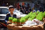 İran'da Nevruz'un ilk gününden büyüleyici kareler