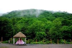 پارک جنگلی ناهار خورانگرگان