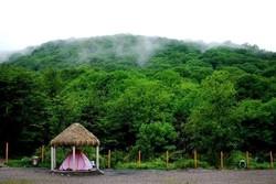 جنگلها و مناطق حفاظت شده گلستان فرصتی برای آرامش گردشگران