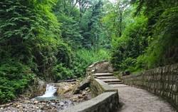 جنگل و آبشار کبودوال