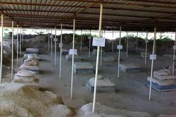 کاوشهای باستانشناسی پیرامون کاخهای هخامنشی دشتستان آغاز شد