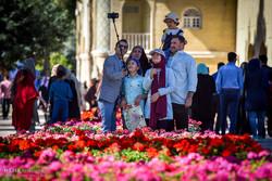 گردشگران نوروزی در باغ ارم شیراز