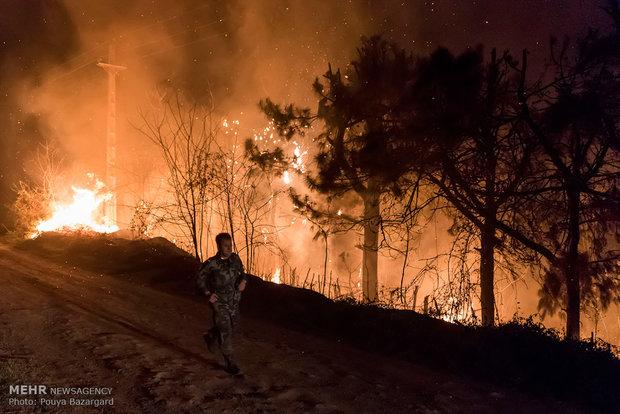 آتش سوزی در جنگل های لاهیجان