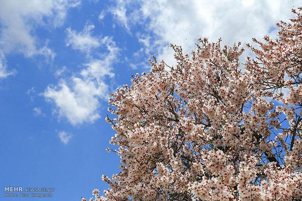 Tüm doğallığıyla İlkbaharın güzelliği