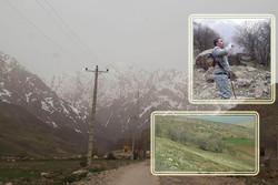 فصل زادآوری حیاتوحش در «آلپ ایران»/ ورود گردشگران ممنوع