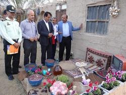 بازدید فرماندار دشتی از کمپ های نوروزی