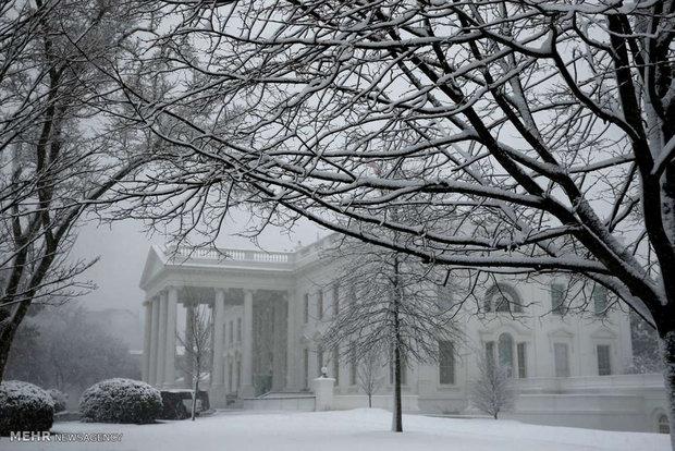 زمستان در بهار در آمریکا