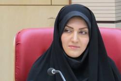 اکرم نجفی
