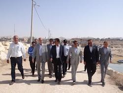 بازدید فرماندار دشتی از بندر لاور ساحلی
