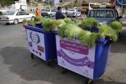 سبزههای عید در کرمانشاه جمع آوری میشود