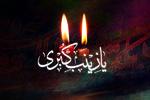 حضرت زینب (س) مدافع مکتب اسلام و الگوی بارز ولایت مداری است