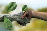 حل مسائل زیست محیطی نیازمند رویکرد فلسفی است