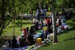 روز طبیعت در پارک بعثت تهران