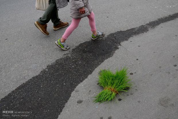 Nature Day across Iran