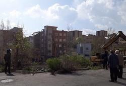 قطع درختان و نابودی فضای سبز در زعفرانیه تبریز