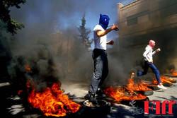 عکسهای «قیام انتفاضه» به نمایش درمیآید/ حمایت از مردم فلسطین