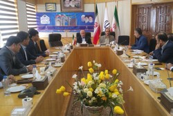 صادرات سیمان از استان سمنان  پیگیری شود