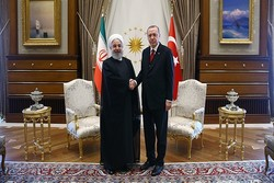 Ruhani ile Erdoğan bir araya geldi