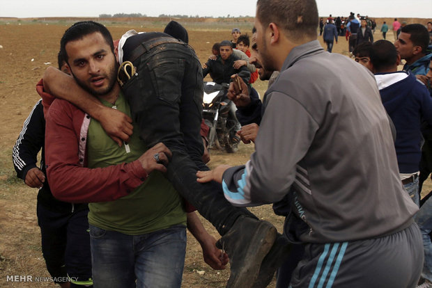Palestinian martyr toll in Qaza rises to 22