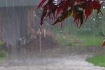 سامانه بارشی دیگری روز جمعه وارد کشور میشود