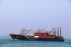 لغو مجوز فعالیت صیادی ۱۶کشتی ترال در آبهای ایران/کمبود ماهی در جاسک غیرقابلپذیرش است