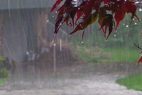 آخر هفته بارانی در سواحل شمال/ سیلاب و توفان در راه