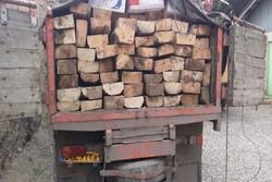 انهدام باند حرفهای قاچاق چوب از منطقه سیستان به استانهای شمالی