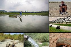 کاهش سطح آب ۹۰ چشمه گلناب دره سوادکوه