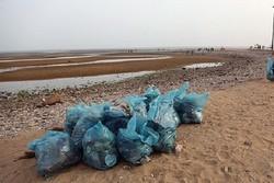 جزایر استان بوشهر پاکسازی میشوند/ جمعآوری پسماندهای رها شده