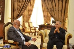 Iraqi political figure hails Iran's major role in defeating ISIL