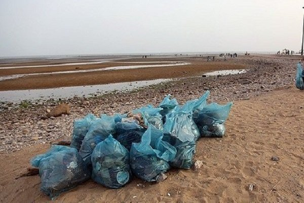 پاکسازی ساحل