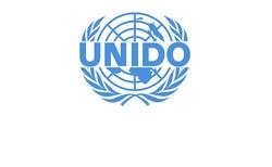 اعلام آمادگی یونیدو برای توسعه همکاری های صنعتی با ایران