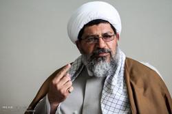 حجت الاسلام شیرازی درگذشت مادرهمسر سیدحسن نصرالله را تسلیت گفت