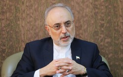 Salehi: Redesigning of Arak reactor finished