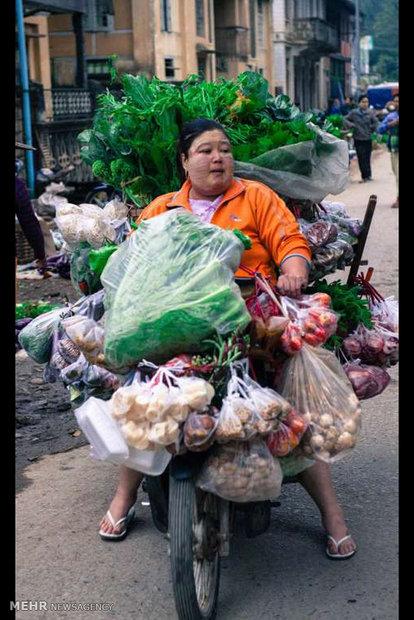 عکسهای مسابقه عکاسی غذا