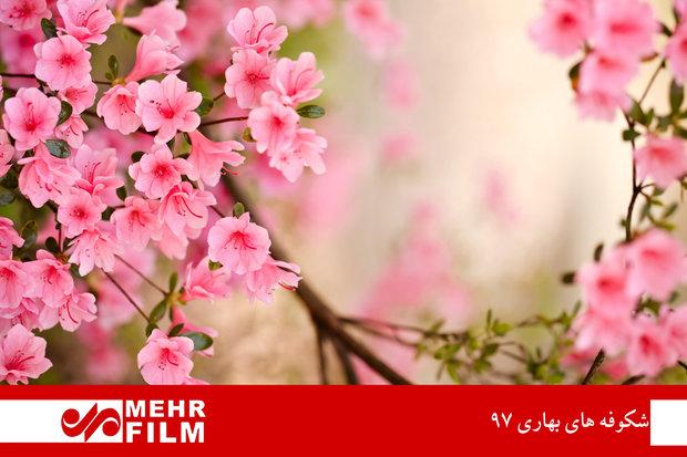 طبيعة ايران بموسم الربيع