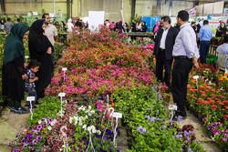 آبیاری فضای سبز تهران به ۱۷۵ میلیون مترمکعب آب نیاز دارد