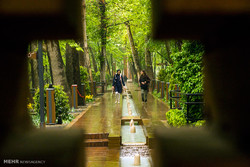 A rainy spring day in 'Iranian Garden'