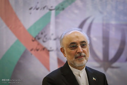 Iran ready to build light-water reactors for its neighbors: Salehi