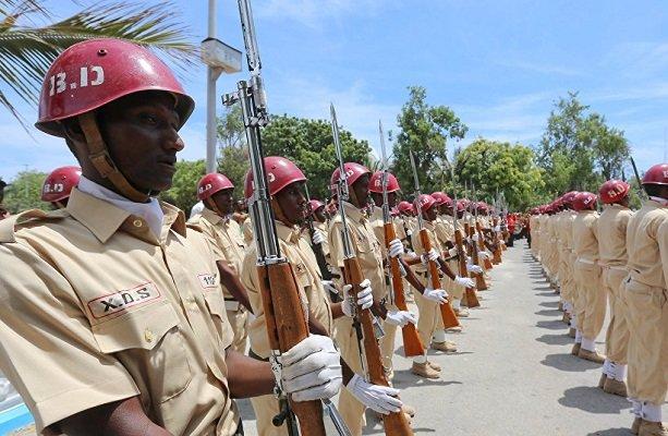 مقتل 11 مسلحاً في مالي في كمين نصبوه لقافلة عسكرية