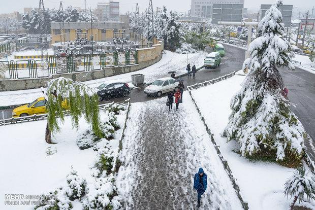 بارش برف بهاری در کرج