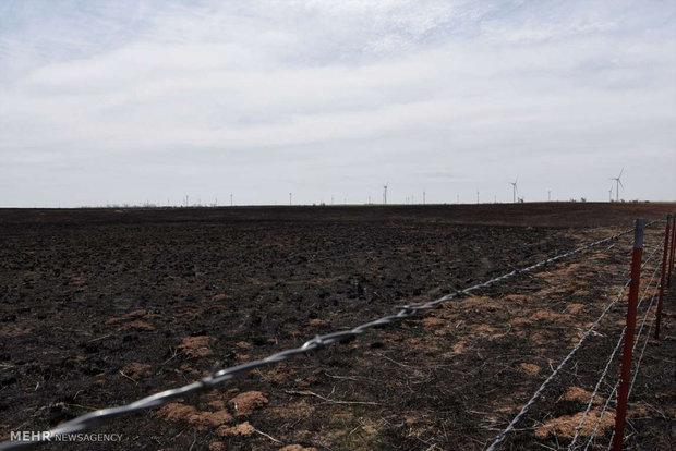ABD'nin Oklahoma eyaletindeki orman yangını