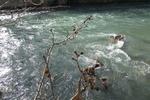 خطونشان فاضلاب برای رودخانه کرج