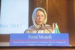 Iran Europe's investment hub