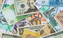 روند کاهشی نرخ رسمی یورو و پوند/ قیمت ۱۰ ارز ملی ثابت ماند