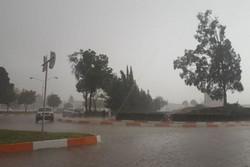 بارش تگرگ در شیراز - کراپشده