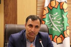 اعزام ۴۳ دستگاه اتوبوس به مرز مهران برای جابجایی زائران حسینی(ع)