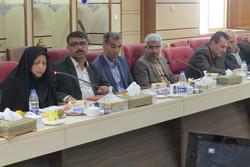 سرما ۸۰ درصد محصولات باغی استان قزوین را از بین برد/دولت کمک کند