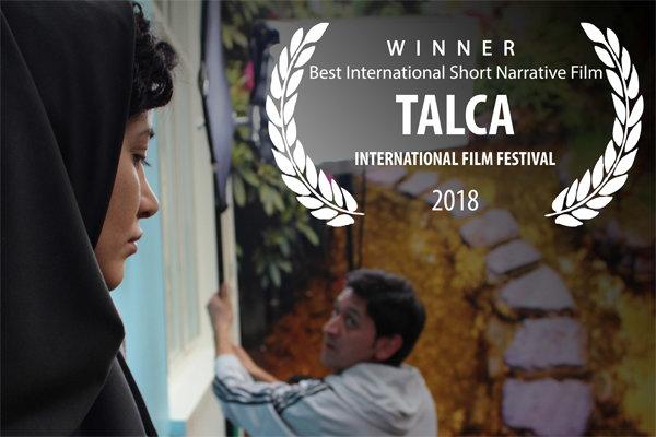 جایزه بهترین فیلم کوتاه تالکای شیلی به «روتوش» رسید