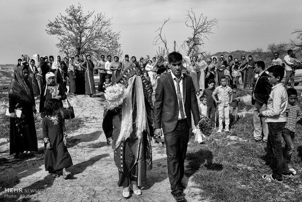 عروس و داماد در حال برگزاری مراسم عروسی سنتی ترکمنی در باغی درروستای آق قلعه منطقه مرزی پالیزان برای گرفتن فیلم عروسی در حال قدم زدن هستند.